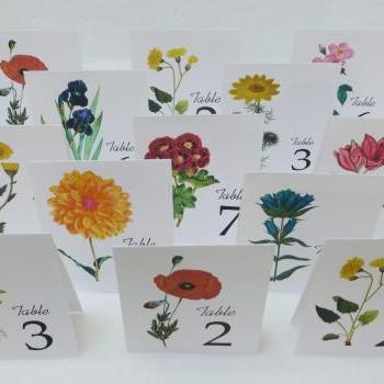 Assorted Wedding Table Cards, Floral table cards, Wedding Table Numbers, Wedding Table Tents,